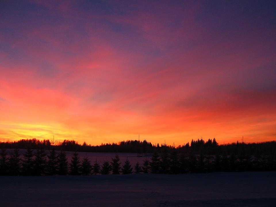 Loojang talvel Nõuni järve ääres