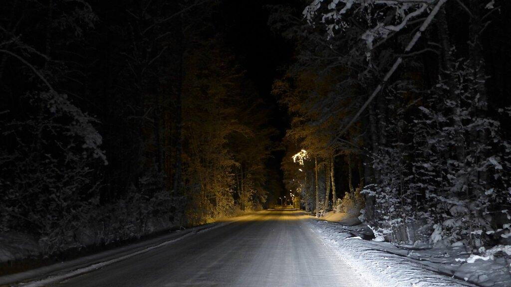 talvised teed